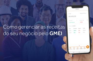 Como gerenciar as receitas do seu negócio pelo GMEI