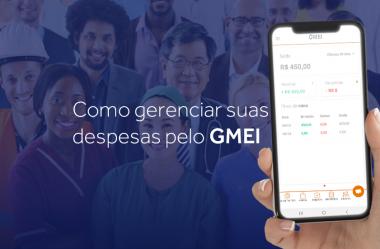 Como gerenciar suas despesas pelo GMEI